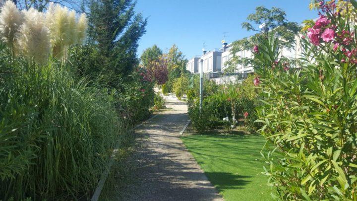 Xedicon - Paisajismo - jardineria